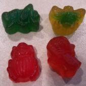 Black Forest Gummy Bugs