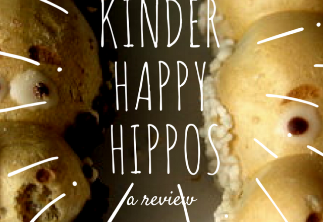 Kinder Happy Hippos Candy - Review
