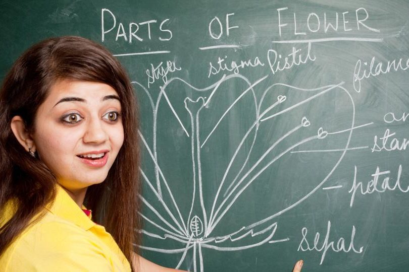 score well in the Class 12 Biology exam