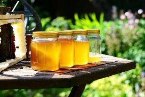 Healthy Alternatives to Sugar