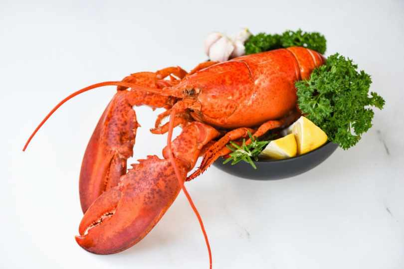 The Most Delicious Salads to Serve with Lobster