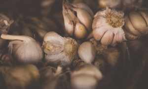 Garlic Benefits for Womens