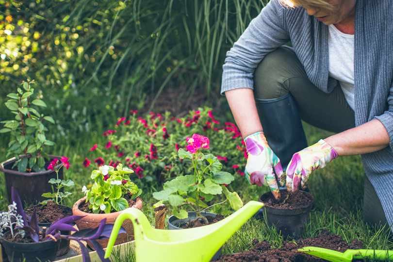 Five tips to gardening better